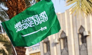 Two Saudi princes released from detention