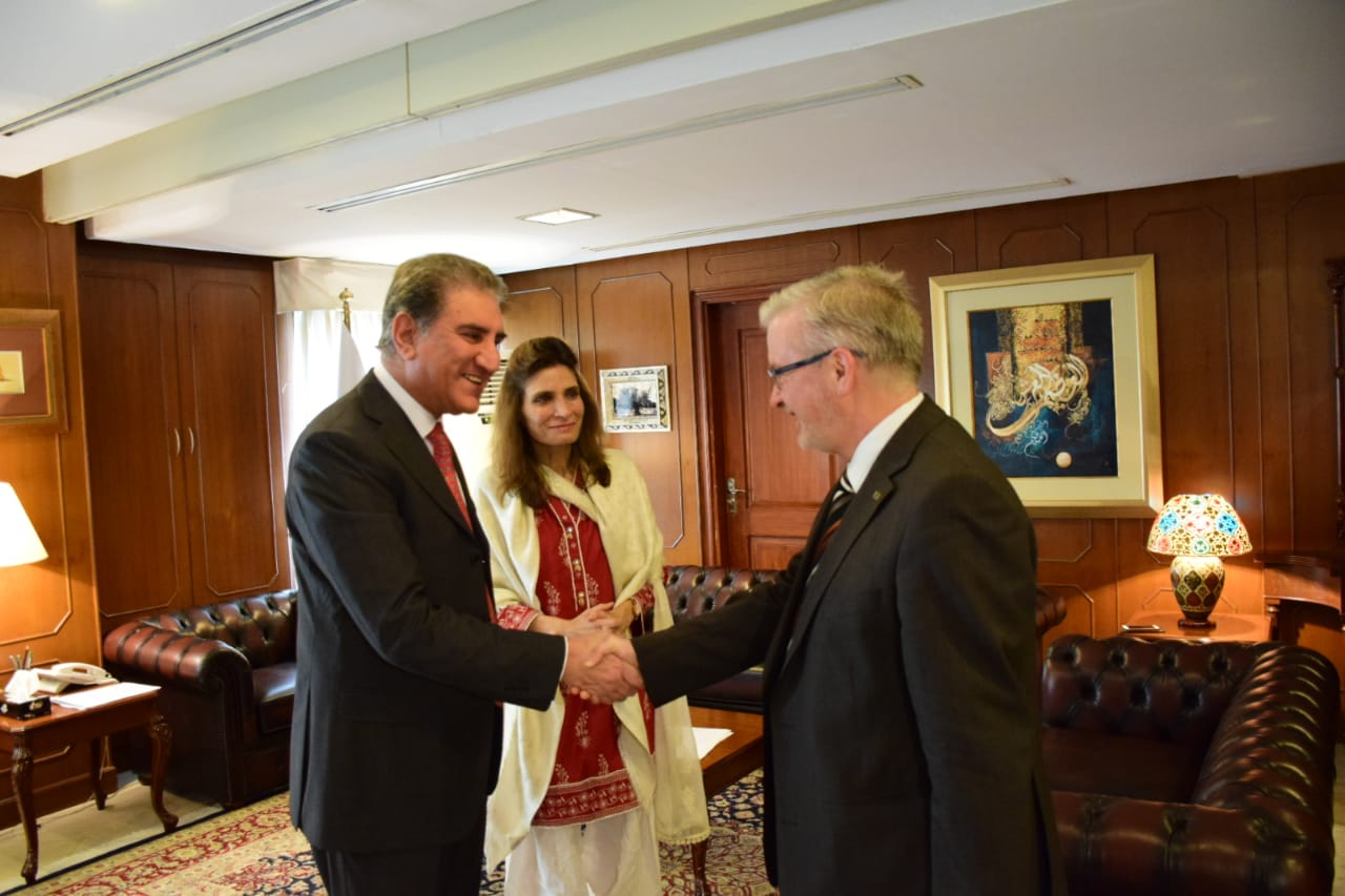 Chief of EU's Election Observation Mission calls on the Foreign Minister