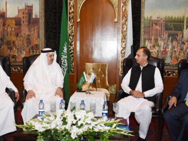 Govt turns down Saudi offer to acquire two power plants